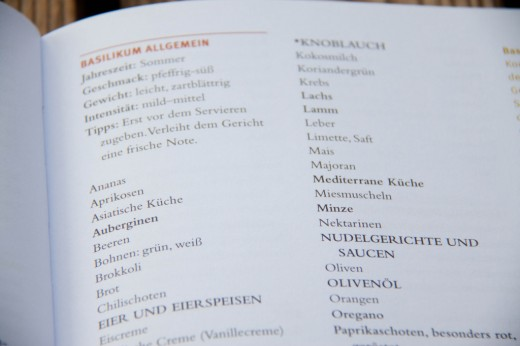 Das_Geheimnis_fantastischer_Rezepte-3