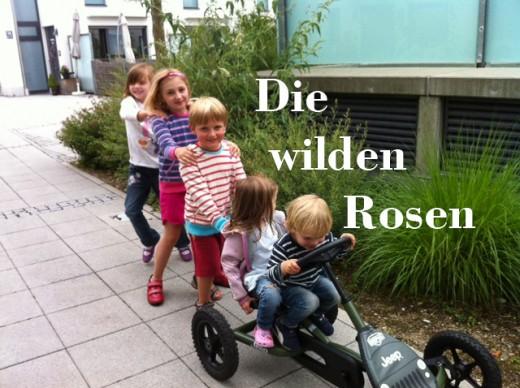 Wildrosenweg_-28