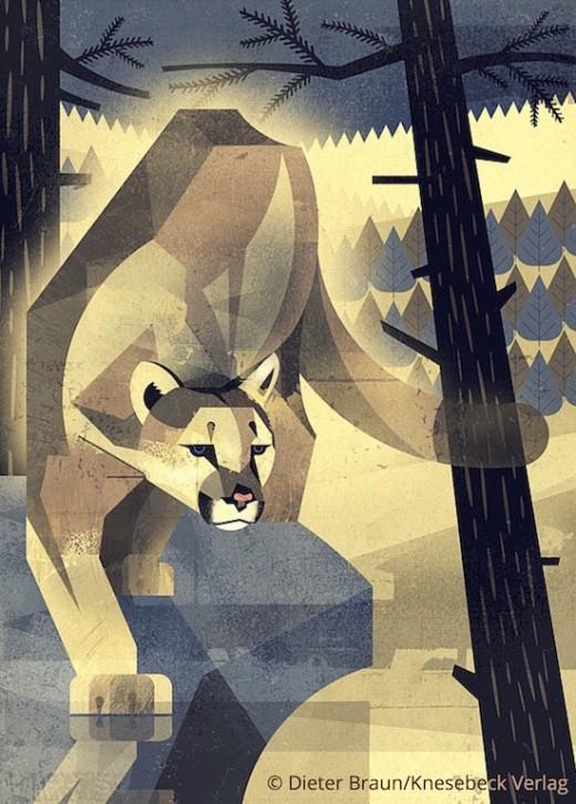 Die Welt der wilden Tiere - im Norden - Pfau Knesebeck Verlag www.meinesvenja.de