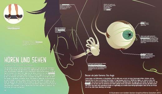 Mein Körper Der Hören und Sehen Buch Kleine Gestalten Verlag www.meinesvenja.de