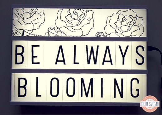 lightbox DIY Motiv be always blooming mit Rosen www.meinesvenja.de