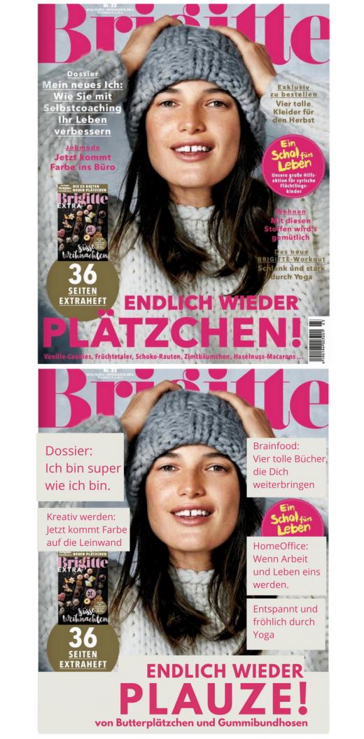 brigitte_cover-beitrag_2