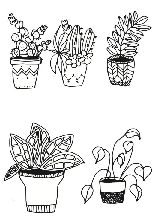 Pflanzen zeichnen - kleine Topfpflanzen
