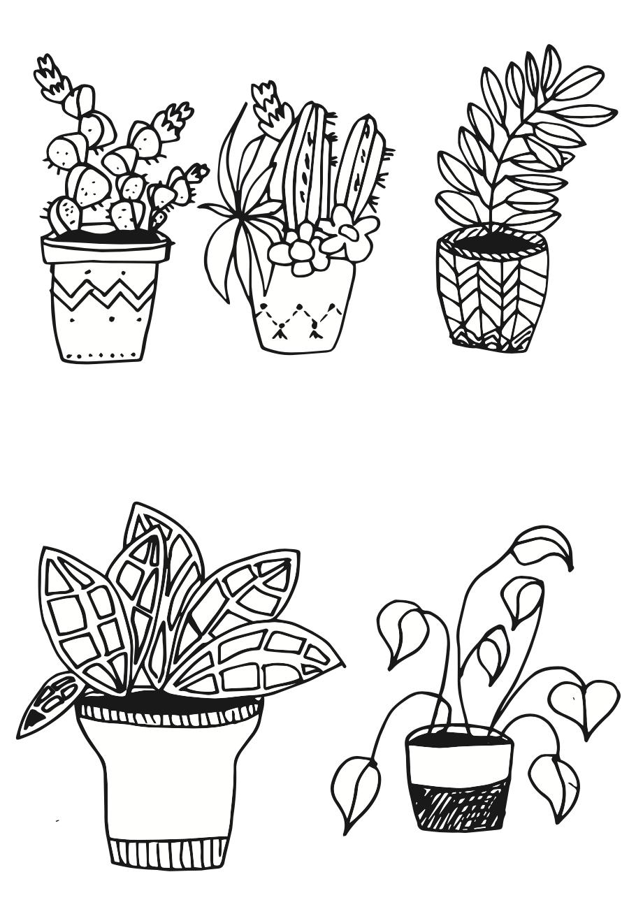 pflanzen zeichnen f r anf nger ganz leicht gemacht. Black Bedroom Furniture Sets. Home Design Ideas
