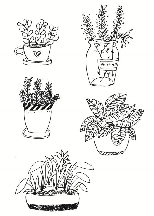 Pflanzen zeichnen - kleine Topfpflanzen 2