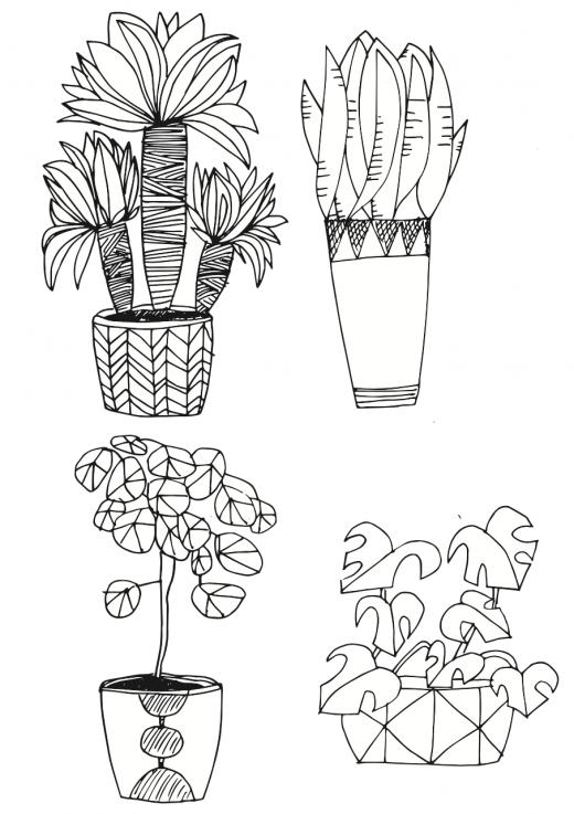 Pflanzen zeichnen - große Topfpflanzen