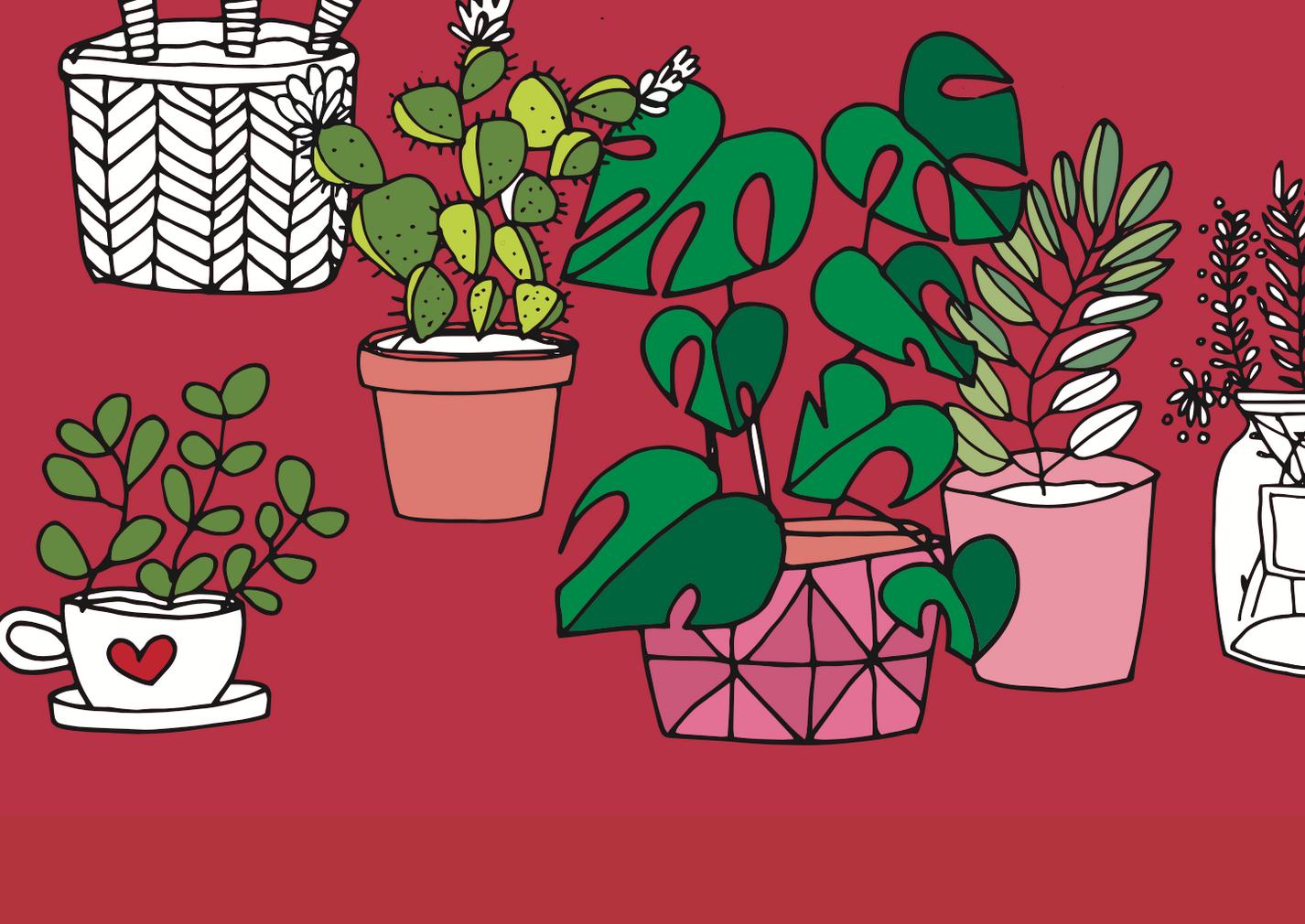 Pflanzen Zeichnen Fur Anfanger Ganz Leicht Gemacht