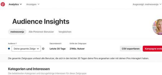 Profil in Unternehmensprofil umwandeln mit Audience Insights
